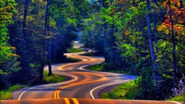 road-winding-through-the-forest