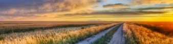 sunsets_landscapes_nature_photography_roads_hdr_photography_2560x1600_wallpaper_Wallpaper_800x600_www.wallmay.com copy