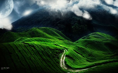 Green-Landscape-Road-Desktop-Wallpaper