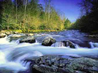 River_flowing fast Wallpaper_g46rl
