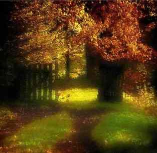 Door of paradise 2