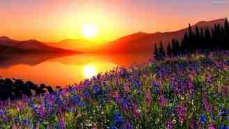 aka--slonca-gory-jezioro-kwiaty-zachod