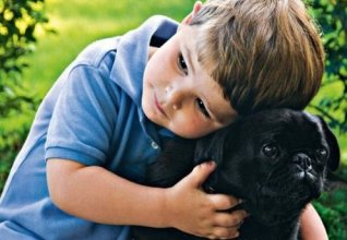 boy and dog copy
