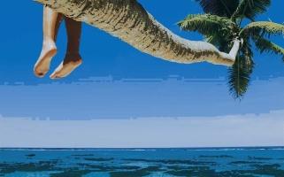 coconut-palms-1280x800