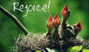 joy rejoice-1