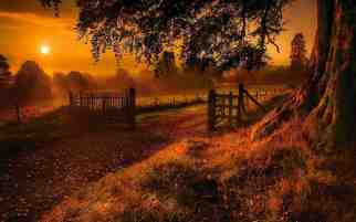 autumn_sunset_hd_widescreen_wallpapers_1280x800